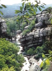 Les Sauts du Cabri dans les gorges du Carami (Var)